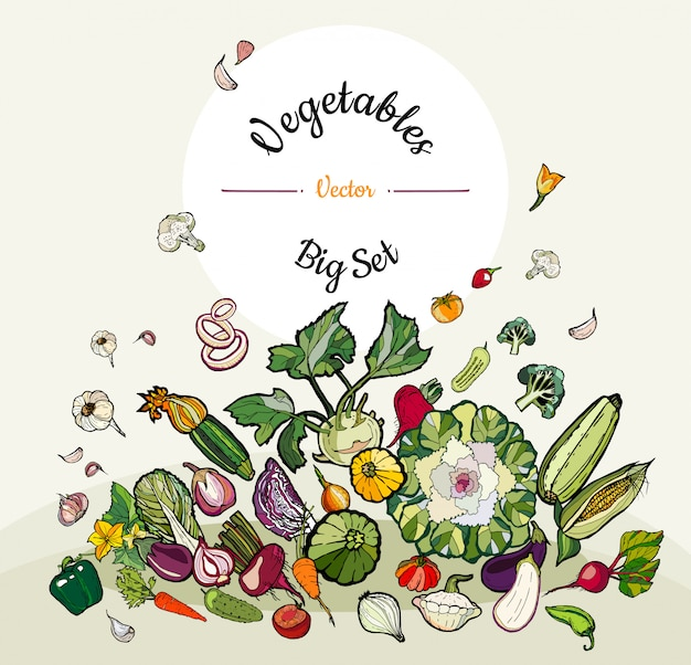 Big set of hipster hand drawn colored vegetables Premium Vector