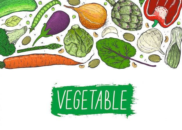 Big set of vegetables in a realistic sketch style. healthy food, natural product. Premium Vector