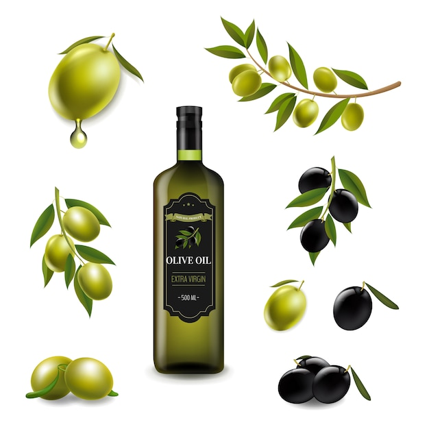 Big set with branch olives and with virgin olive oilin glass bottle white Premium Vector