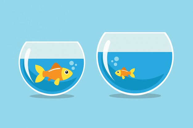 Big and small goldfish looking at each other Premium Vector