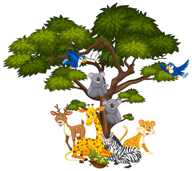 Big tree and many different animals on it Premium Vector