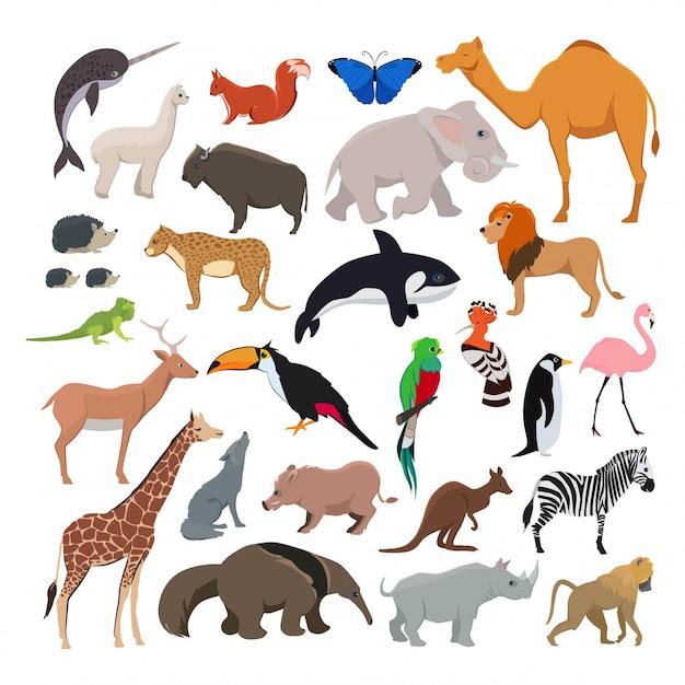 Big vector set with wild cute animals Premium Vector