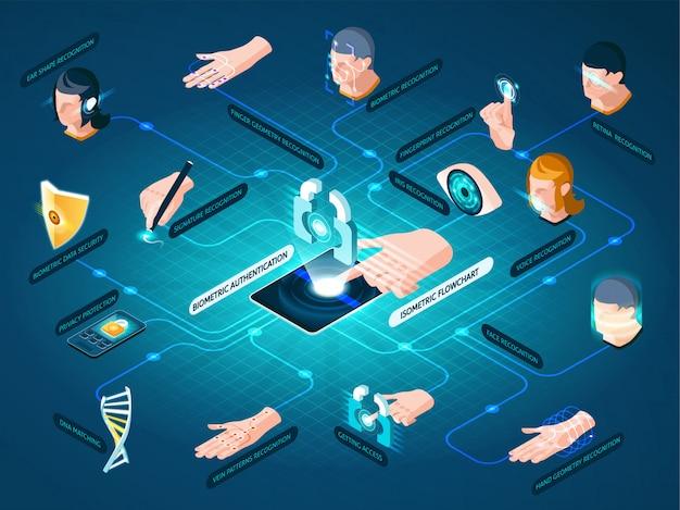 Biometric authentication methods isometric flowchart Free Vector