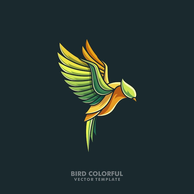 Bird colorful line art illustration vector design template Premium Vector