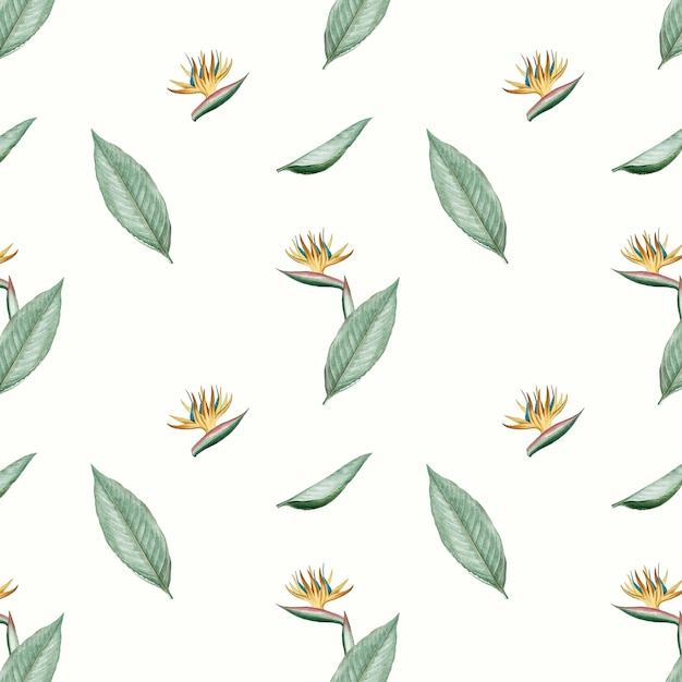 Bird of paradise flower illustration Free Vector