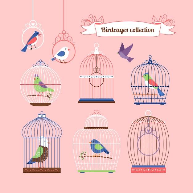 Птицы и птичьи клетки милые цветные иллюстрации Бесплатные векторы