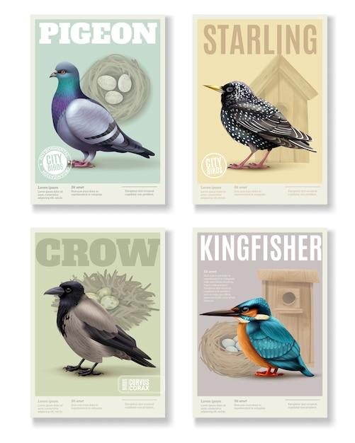 さまざまな鳥と編集可能なテキストの4つの長方形の垂直バナーカラフルな画像と鳥バナーコレクション 無料ベクター