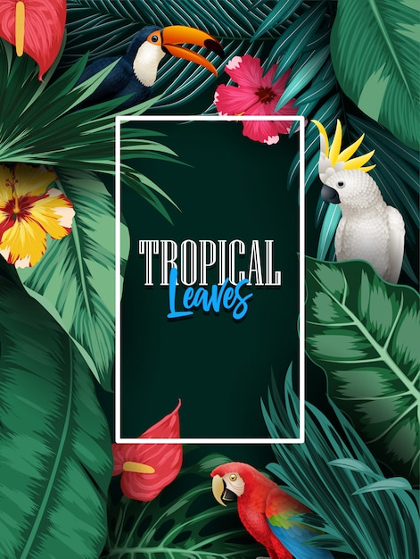 Birds collection and tropical plants background Premium Vector