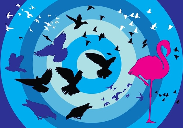 Birds silhouettes over concentric\ circles