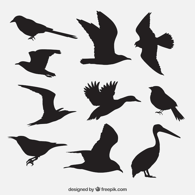 birds silhouettes pack vector free download love bird silhouette vector love bird silhouette vector