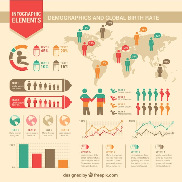 Birth rate infographic Vector