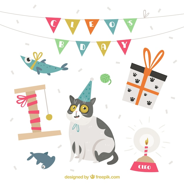Birthday elements collection in flat style Free Vector