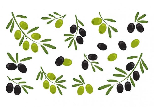 黒と緑のオリーブ、葉と枝のオリーブ。ベクトルイラスト Premiumベクター