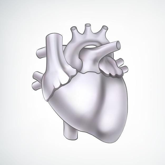 흑인과 백인 3d 심장 무료 벡터