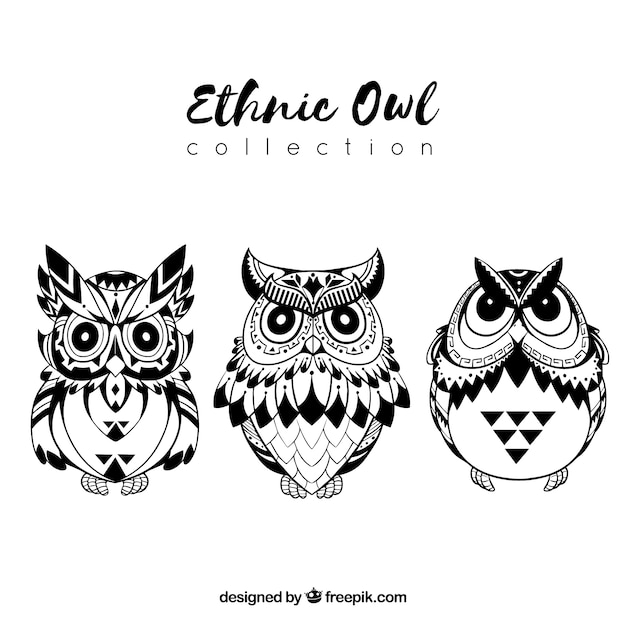 black and white ethnic owl collection vector free download