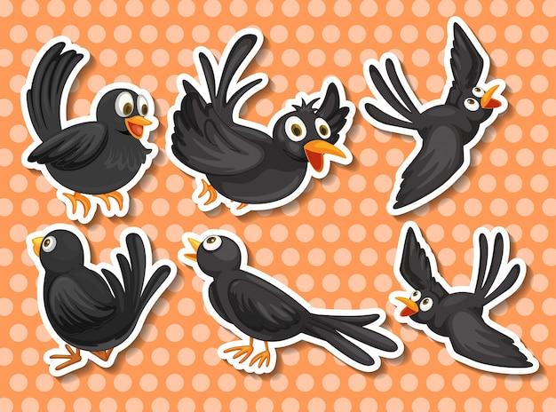 Black bird Free Vector