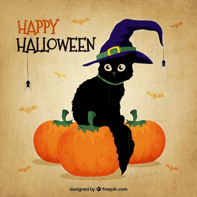 Black cat with witch hat for halloween Free Vector