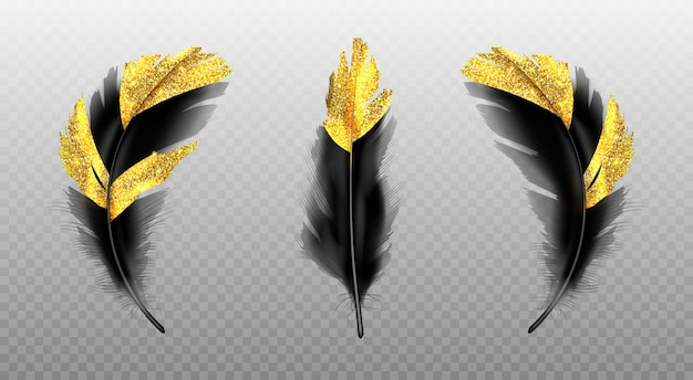 透明にゴールドのキラキラと黒い羽 無料ベクター