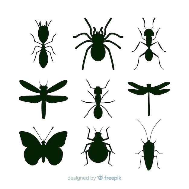 Black insect silhouettes collection Free Vector
