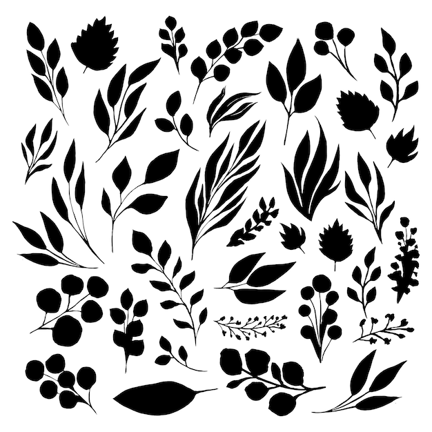 검은 잎 체결 실루엣을 설정합니다. 벡터 격리 된 그림 무료 벡터