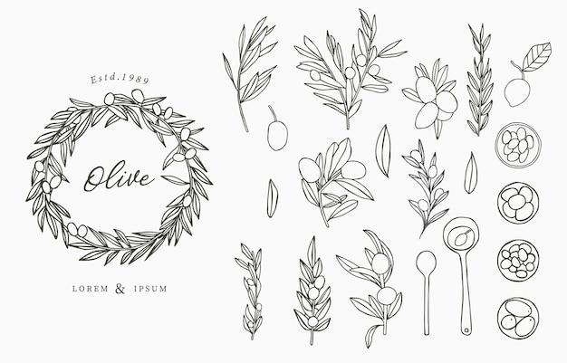 Коллекция логотипов black olive с листьями. Premium векторы