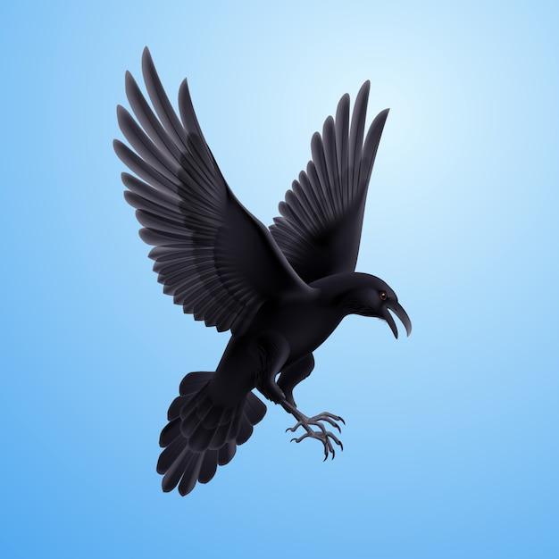 Black raven on blue background Premium Vector