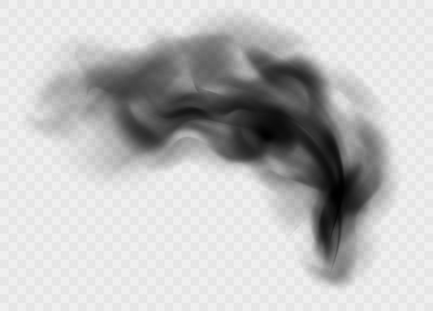 Black smoke cloud isolated. black cloudiness or smog. realistic dark vector effect. Premium Vector