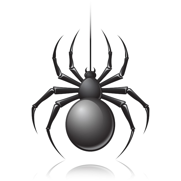 Black spider Free Vector