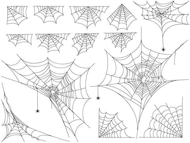 Black spiders and different web isolated on white Premium Vector