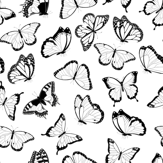 Black and white flying butterflies seamless pattern. isolated on white background. .