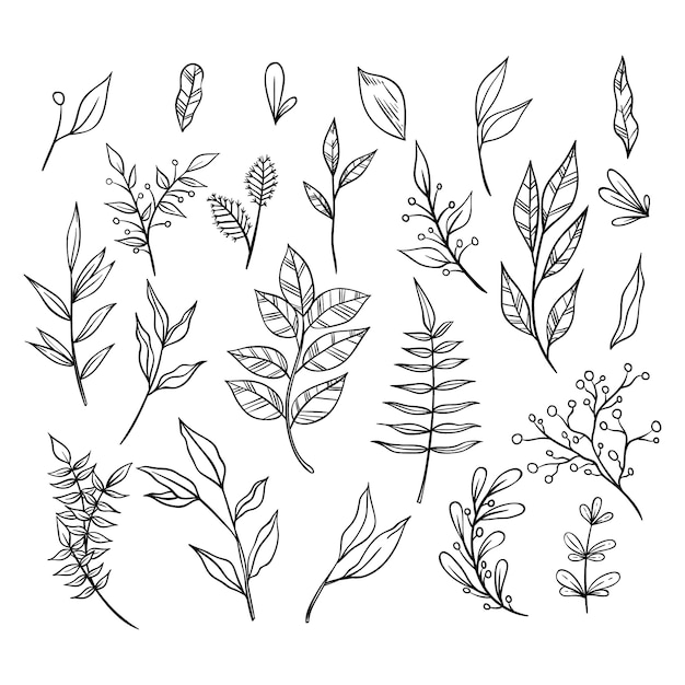 Black and white hand drawn floral ornament collection with branches and leaves. decorative elements for decoration Premium Vector