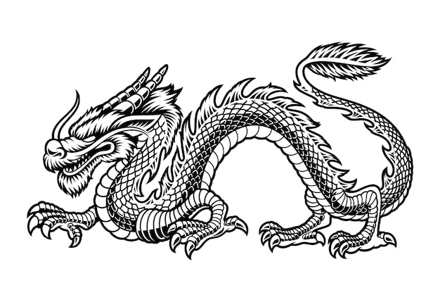 A black and white illustration of a chinese dragon, isolated on white background. Premium Vector