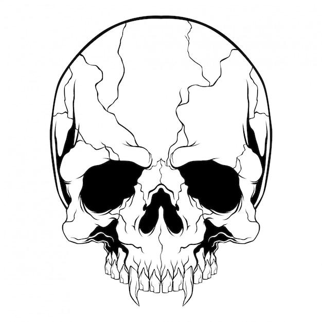 Black and white skull Premium Vector