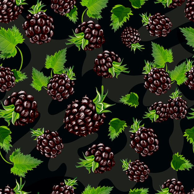 Blackberry vector seamless pattern. Premium Vector