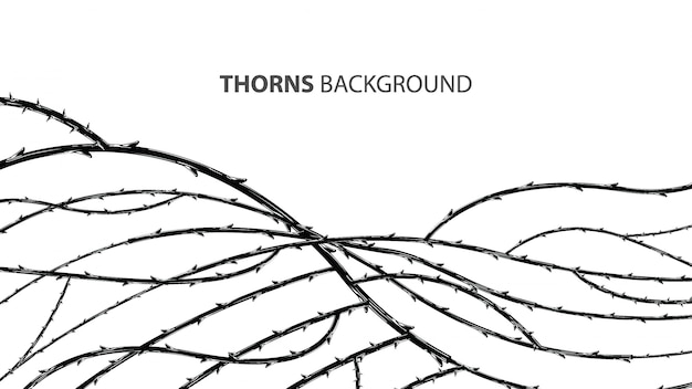 Blackthorn branches with thorns stylish background. Premium Vector