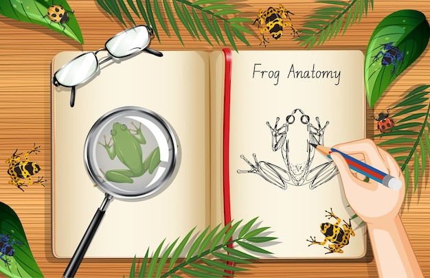나뭇잎과 개구리 요소와 사무실 작업 테이블 상위 뷰에 빈 책 페이지 프리미엄 벡터