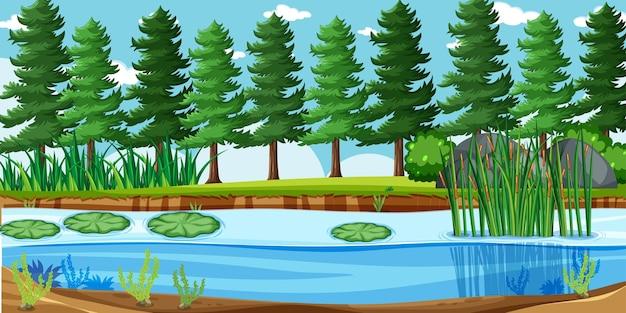 Paesaggio vuoto nella scena del parco naturale con molti pini e paludi Vettore gratuito