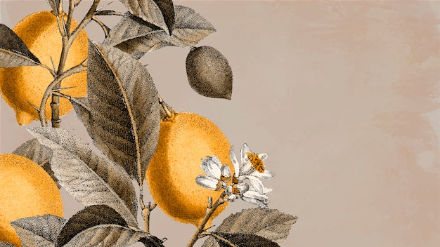 Blank lemon tree background Free Vector