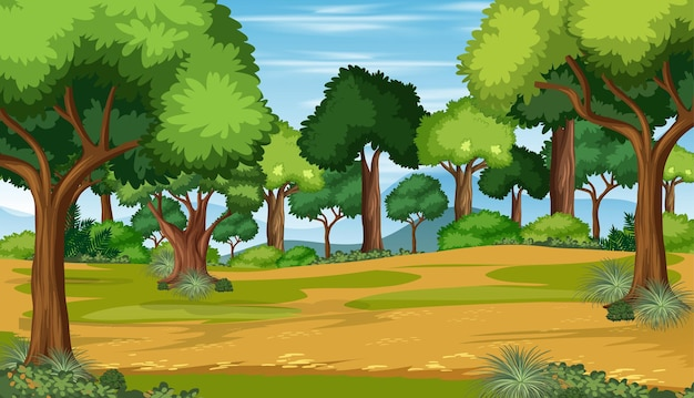 많은 나무와 빈 자연 숲 풍경 장면 무료 벡터