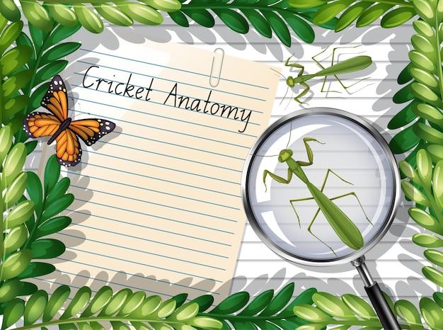 Вид сверху чистый лист бумаги с элементами листьев и бабочек и богомолов Premium векторы