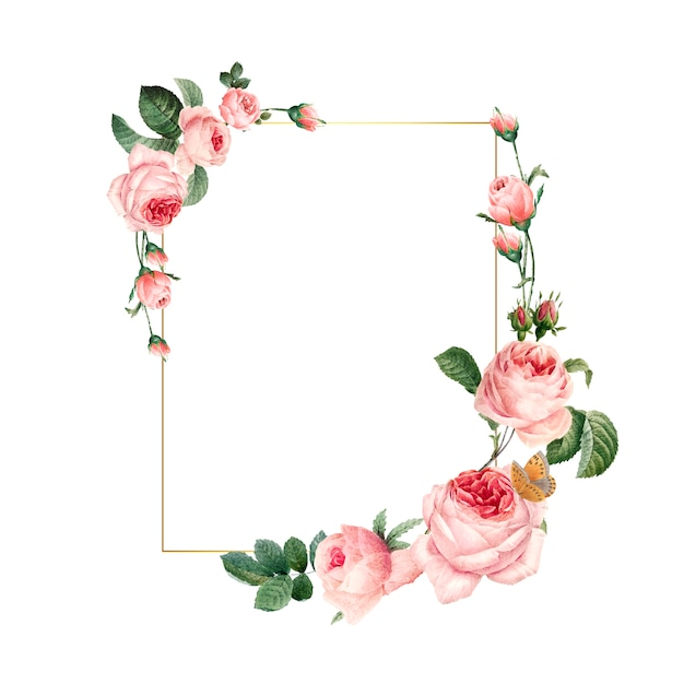 Blank rectangle pink roses frame on white background Free Vector