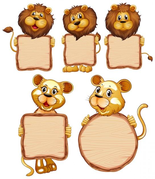 Пустой шаблон знак со многими львами на белом фоне Бесплатные векторы