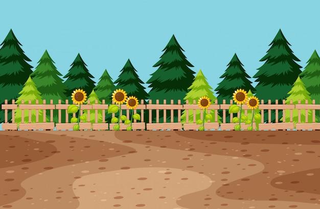 Spazio nel giardino con girasole e pino sullo sfondo Vettore gratuito