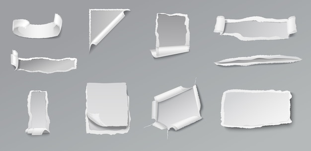 Blank torn paper set of different shapes and forms on gray Free Vector