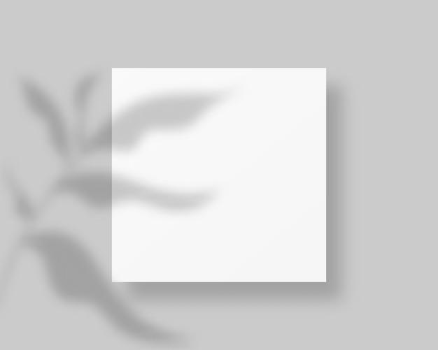 Чистый белый лист бумаги с тенью листьев. пустой документ с наложением тени. , шаблон Premium векторы