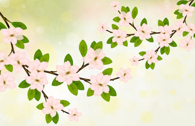 Blooming branch vector with pink spring blossom. Premium Vector