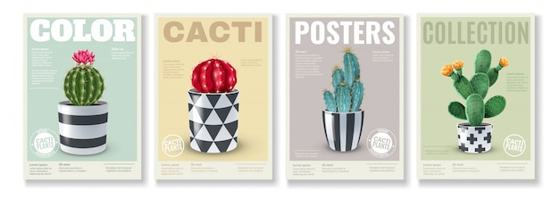 Blooming cacti varieties 4 realistic mini posters set with popular house plants in  decorative pots Free Vector