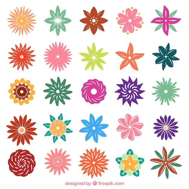 Blooming Flowers In Minimalist Style Free Vector