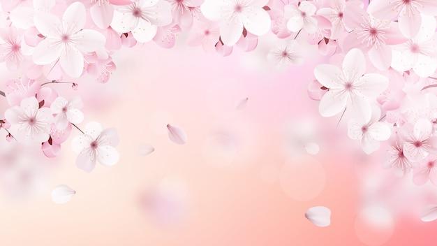 꽃이 만발한 라이트 핑크 사쿠라 꽃. 프리미엄 벡터