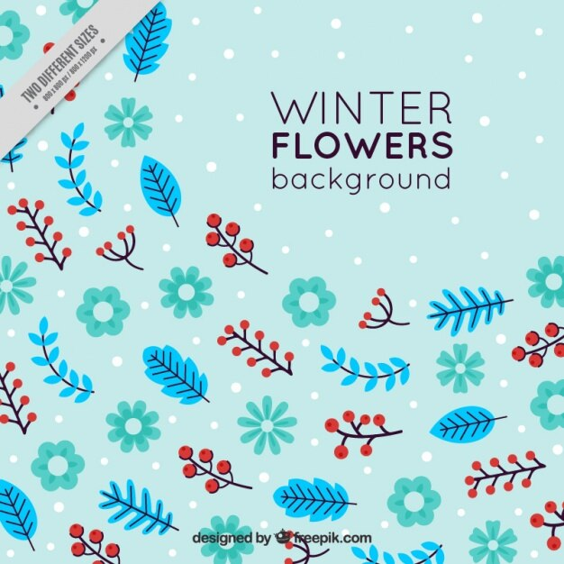 Blue background with winter flowers and snow | Stock Images Page